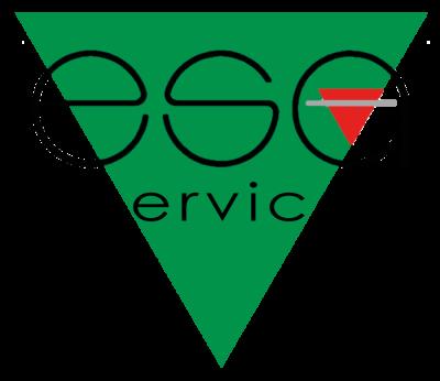 Esa Service